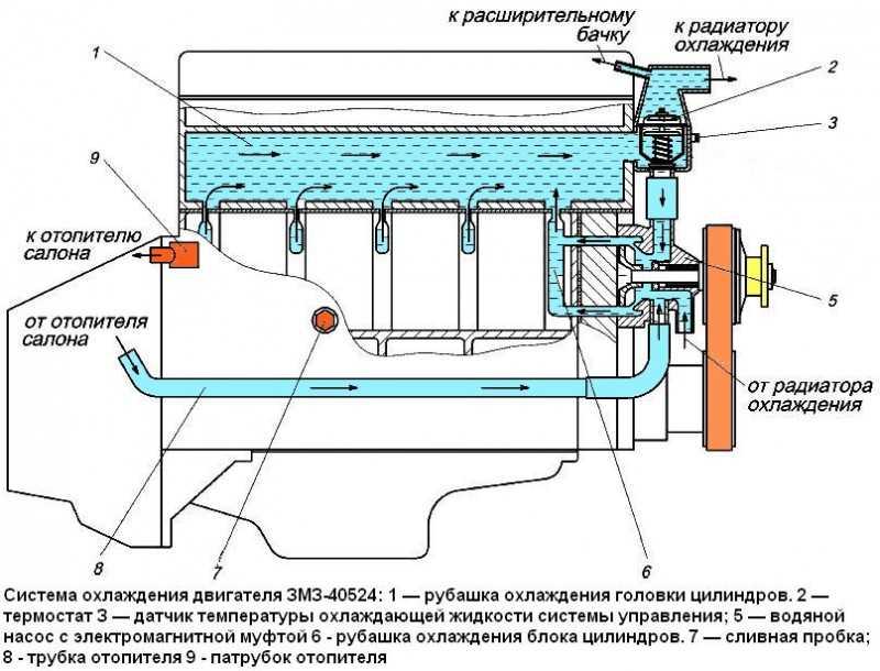 Устройство системы охлаждения Лада Приора, Lada Priora, ремонт